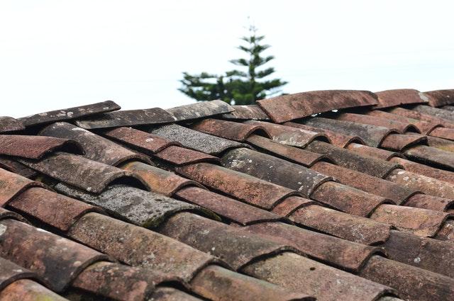 Roof Painter in Johannesburg